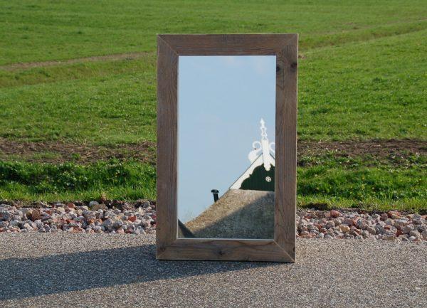 Spiegel Goldhörgen2