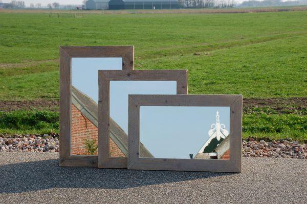 Spiegel Goldhörgen1